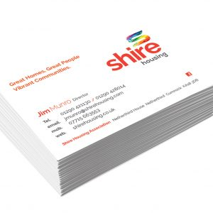 Premium Silk Single Sided Business cards